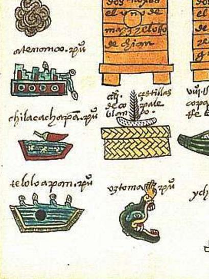 Glifo de Chilacachapan , Códice Mendoza f. 37r (via )