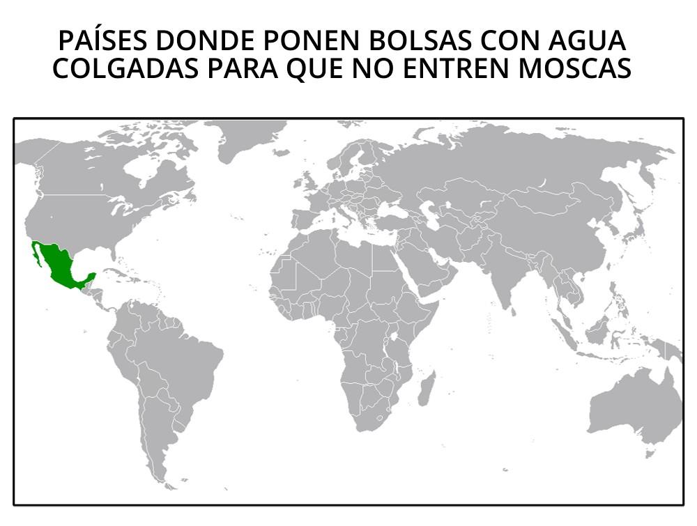 Países donde ponen bolsas colgadas para que no entren moscas